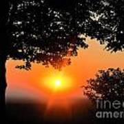 Sunrise 365 38 Poster