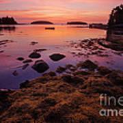 Sunrise At Tenants Harbor Poster