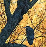 Sunrise By James Figielski Poster