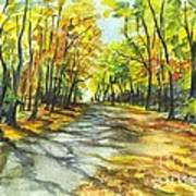 Sunrise On A Shady Autumn Lane Poster