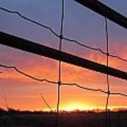 Sunrise On Fence Poster