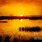 Sunrise On The Pond Poster