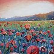 Sunrise Poppies Poster