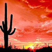 Sunrise Saguaro National Park Poster