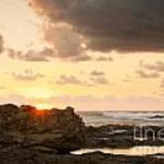 Sunrise Seagull On Rocks Poster