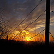 Sunset Along The Fence Yellow Red Orange Fine Art Photography Print  Poster