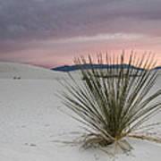 Sunset At White Sands Poster