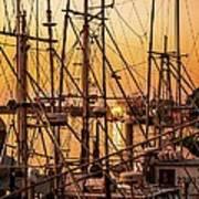 Sunset Boat Masts At Dock Morro Bay Marina Fine Art Photography Print Sale Poster