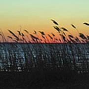 Sunset Colors Island Beach State Park Nj Poster