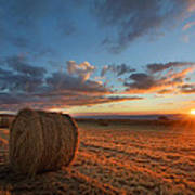 Sunset Hay Poster