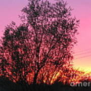 Sunset In April- Silute Lithuania Poster
