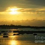 Sunset In Camargue - France Poster