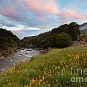 Sunset In Cobb Valley Of Kahurangi Np Of New Zealand Poster