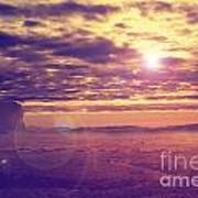 Sunset In The Desert Poster by Jelena Jovanovic