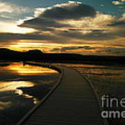 Sunset In Yellow Stone Poster