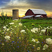 Sunset Lace Pastures Poster by Debra and Dave Vanderlaan