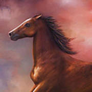 Sunset Mustang Poster