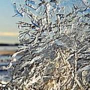 Sunset On Ice Poster