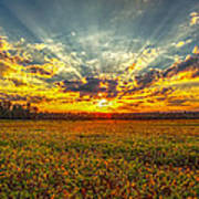 Sunset Over Field Poster