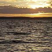 Sunset Over Lake Cazaux Poster