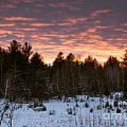 Sunset Over The Winter Forest Poster