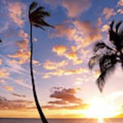 Sunset Palm Trees In Hawaii Poster