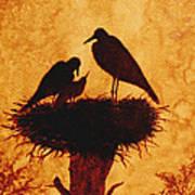 Sunset Stork Family Silhouettes Poster