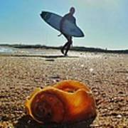 Surfer And Shell Hatteras Lighthouse 3 10/1 Poster