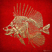 Surgeonfish Skeleton In Gold On Red  Poster