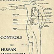 Surgery Controls The Human Mechanism   1906 Poster