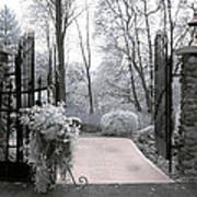 Surreal Haunting Infrared Nature Gate Scene Poster