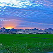 Sutter Buttes Sunset Ray Burst In The Rice Fields  Poster