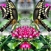 Swallowtail Butterfly Digital Art Poster