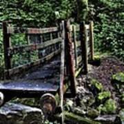 Swan Creek Footbridge Poster
