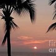 Swaying Palms Poster
