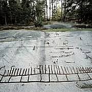 Sweden. Tanum. Petroglyphs Of Tanum Poster