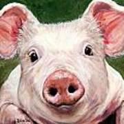Sweet Little Piglet On Green Poster
