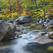 Swift River In Fall White Mountains New Poster