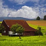 Swiss Farms Poster