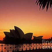 Sydney Harbour Sunrise Poster