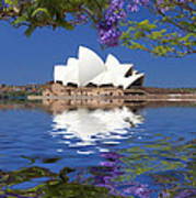 Sydney Opera House with jacaranda reflection Poster