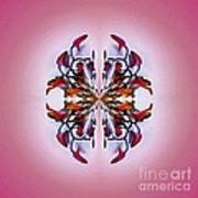 Symmetrical Orchid Art - Reds Poster