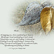 Sympathy Greeting Card - Poem And Milkweed Pods Poster