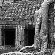 Ta Prohm Roots And Stone 02 Poster