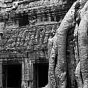 Ta Prohm Roots And Stone 05 Poster