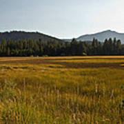 Tahoe Keys Meadow Poster