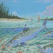 Tailing Bonefish In003 Poster by Carey Chen