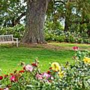 Take A Seat - Beautiful Rose Garden Of The Huntington Library. Poster