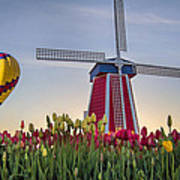 Taking Off At Tulip Field Poster