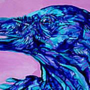 Talking Raven Poster